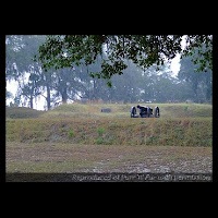 Cannon at Fort McAllister