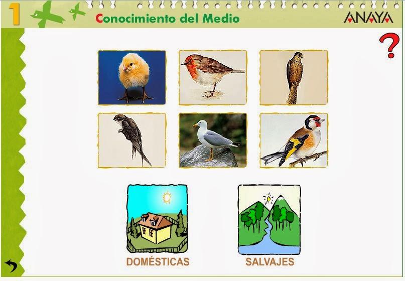 http://centros.edu.xunta.es/ceipcampolongo/intraweb/Recunchos/1/Recursos_Anaya/datos/03_cmedio/03_Recursos/actividades/2losAnimales/act9.htm