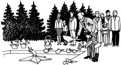 Holidays — О праздниках на английском языке. Holiday Wishes — Популярные поздравительные фразы