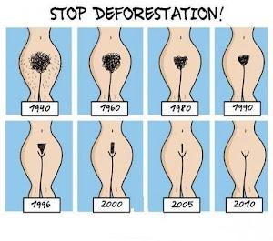 Fermiamo la Deforestazione!!