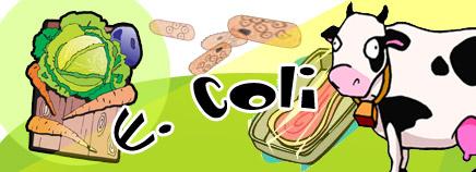 E. coli gây ra 3 thể bệnh chính trên bê, nghé