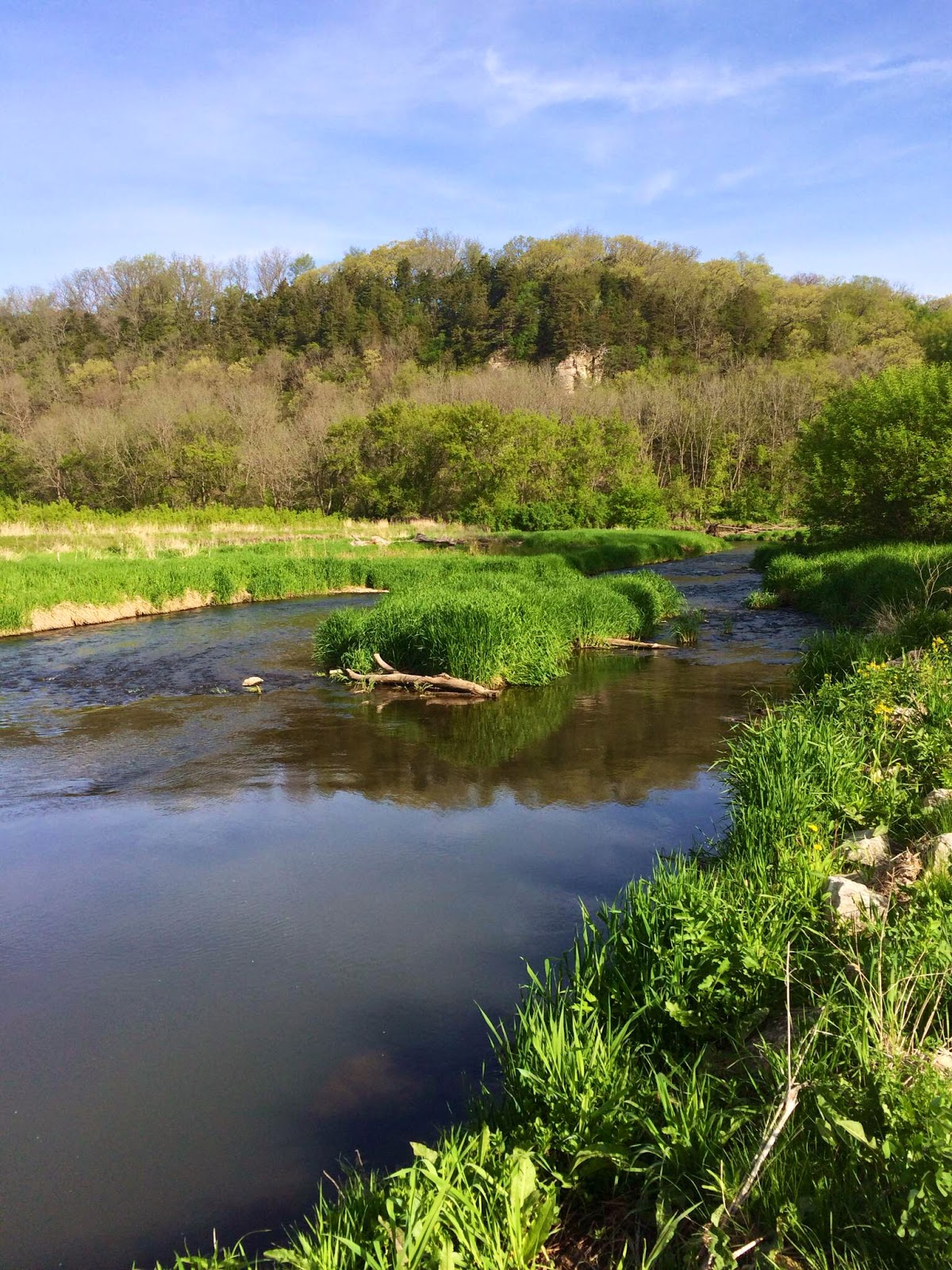 The rogue outdoors iowa driftless for Driftless fly fishing