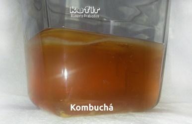 KOMBUCHÁ