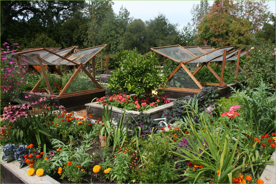 Raised Vegetable Garden Design Ideas