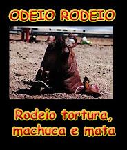 Odeio Rodeio