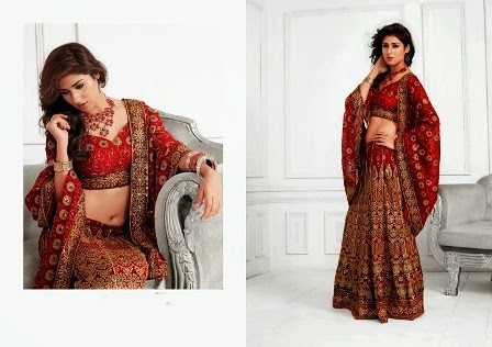 Bridal-Red-Lehenga-Choli