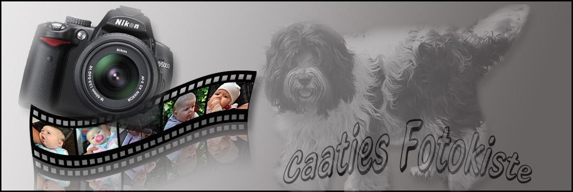Caaties Fotokiste