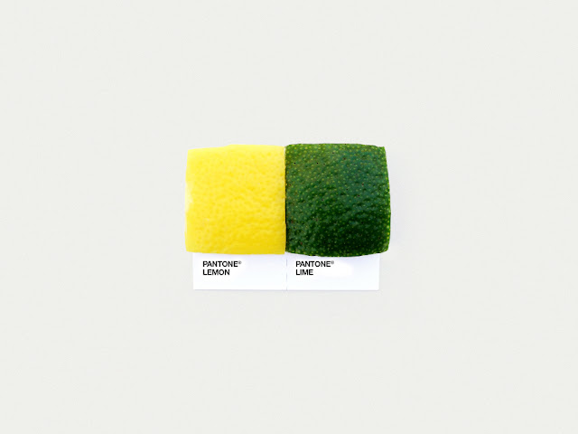 food art pairings david schwen, david schwen designer dschwen, graphic designer new york, pantone food, lemon and lime