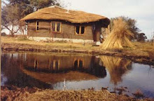 cabaña cerca del rio