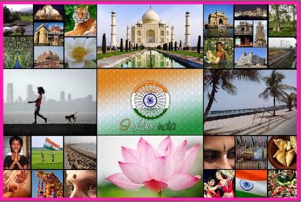 Minha Índia