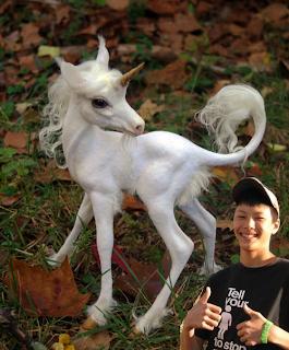 el asesino del unicornio: