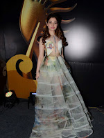 Tamanna At South IIFA Utsav-cover-photo