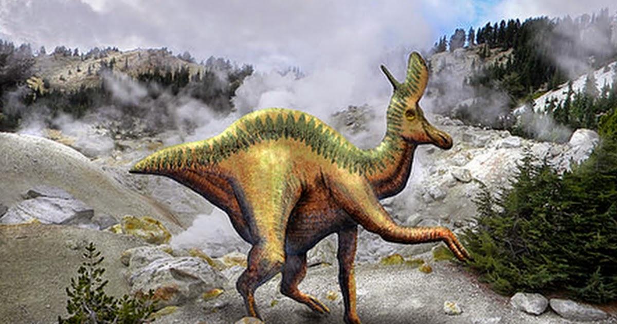 Pinturas cuadros lienzos dinosaurios en paisajes - Lienzos decorativos ...