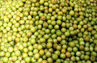 Gooseberry, household remedy for diabetes