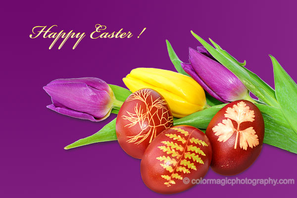 Easter card with Easter eggs and tulips.