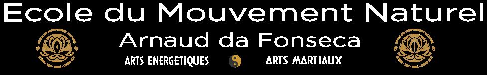 Cours de Qi Gong • Taichi Chuan • Bagua Zhang • Kuntao • Pencak Silat • à La Rochelle et alentours