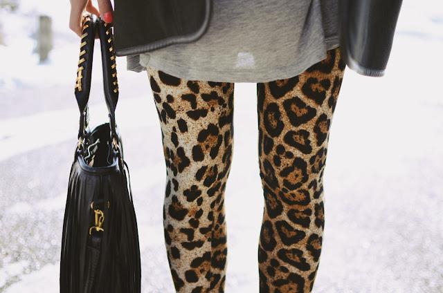 leopard1.jpg (1280×848)