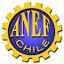 ANEF reafirma compromiso con el empleo y defensa de los funcionarios públicos