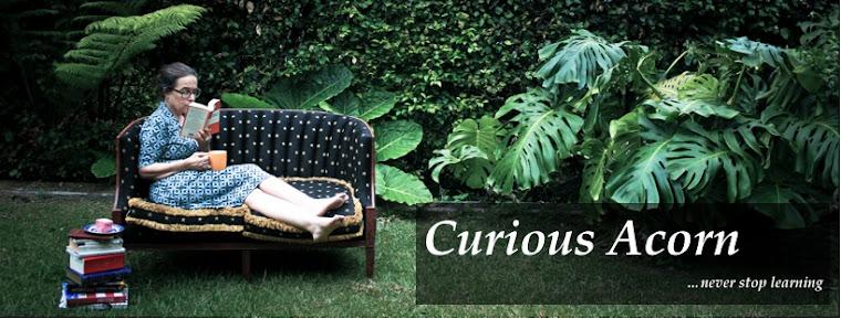Curious Acorn