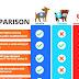 Psychiatric Service Dog - Psychiatric Service Dog Certification