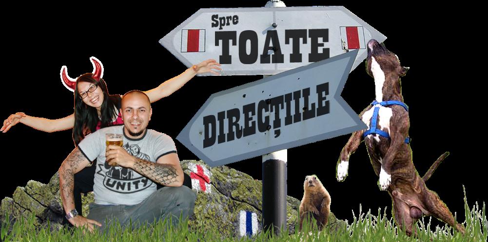 Toate Directiile