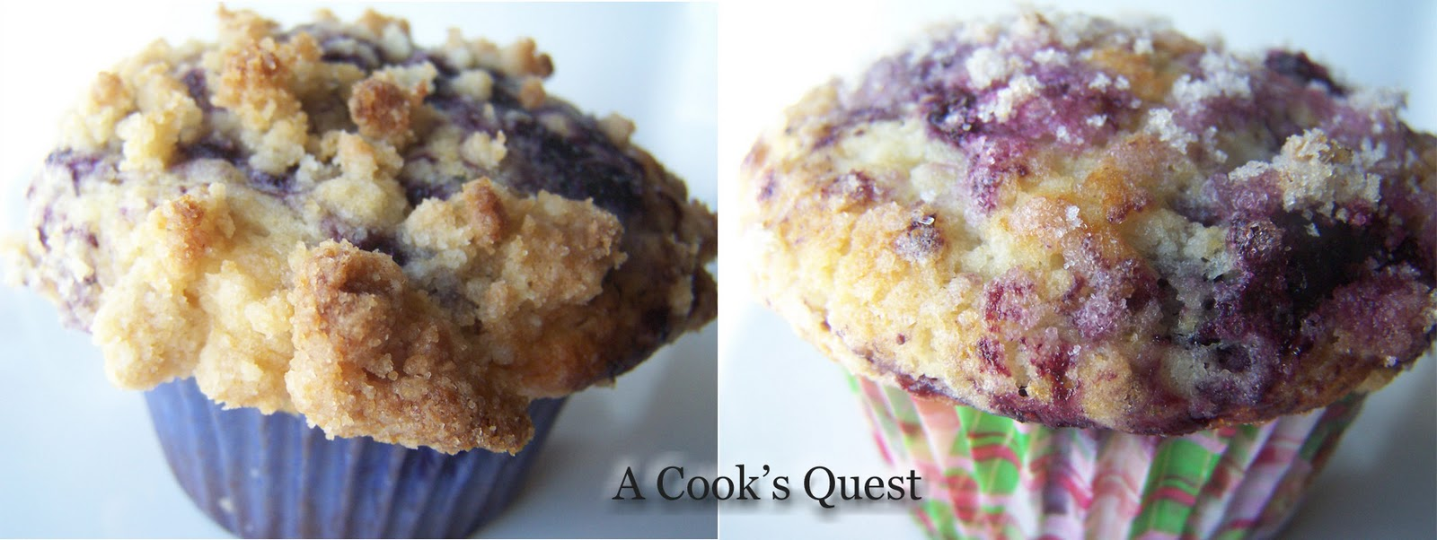 Cook's Quest: The Best Ever Blueberry Muffins