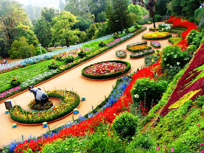 Botanical garden in Lucknow