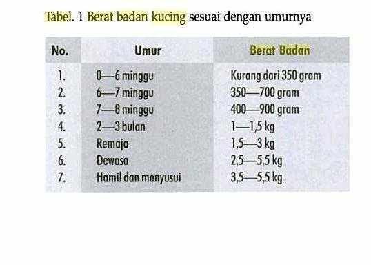 Kalkulator Berat Badan Ideal untuk Pria dan Wanita (Remaja/Dewasa)