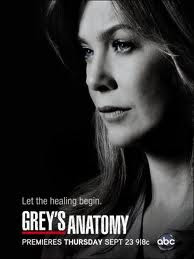 Assistir Grey's Anatomy 9 Temporada Online
