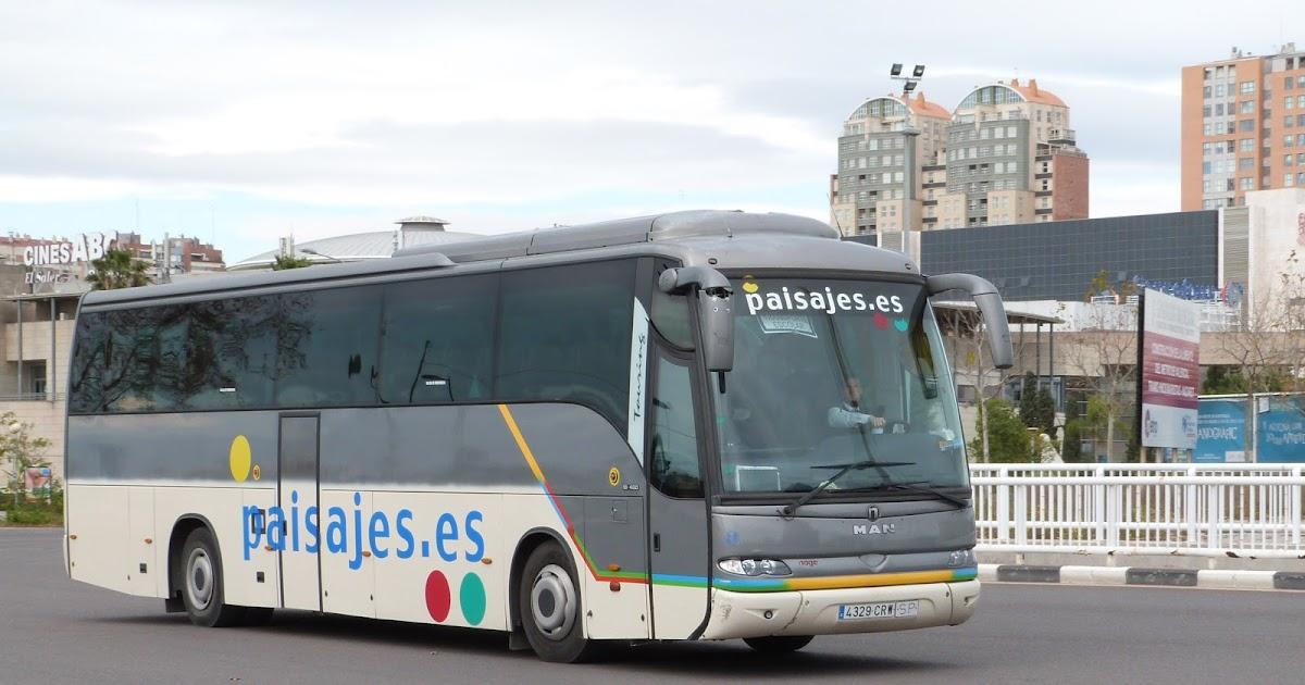 autobuses de valencia 233
