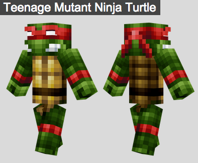 3. Teenage Mutant Ninja Turtle Skin