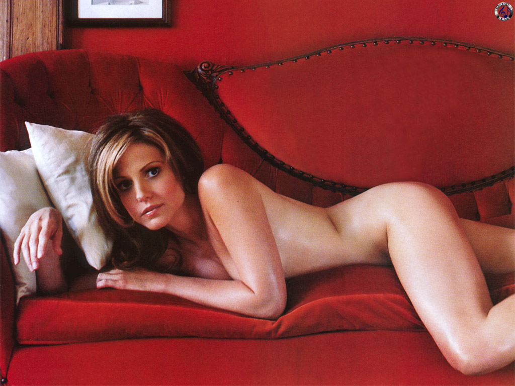 http://4.bp.blogspot.com/-TF8GoWclRyo/TYX1M9Rp1dI/AAAAAAAANSY/9IzlL_lRkns/s1600/mary-louise-parker-nude-photo.jpg