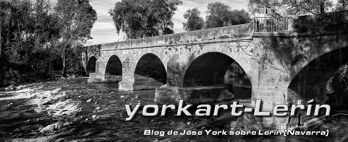 yorkart-Lerín