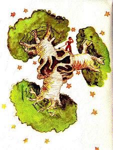 Los baobabs al menos protegen de las radiaciones solares