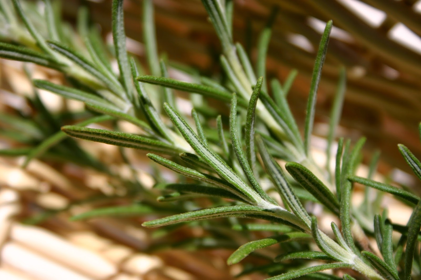 Use rosemary to make tea.