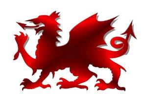 Rhyddid I Gymru  Free Wales