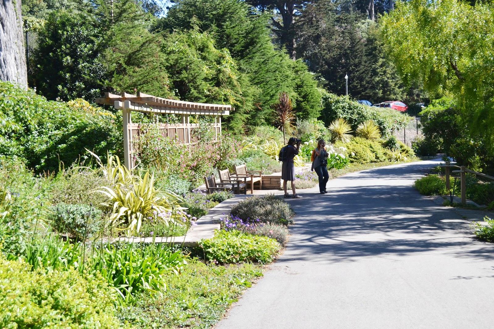 The Outlaw Gardener Garden Bloggers 39 Fling Visiting The