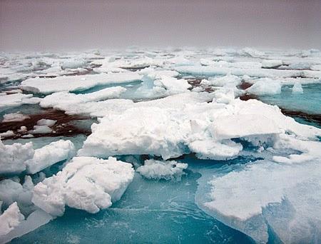 Resultado de imagen de descongelación casquetes polares