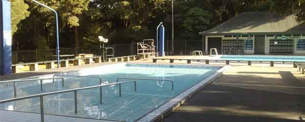 Cheap And Free Things To Do In Auckland Free Swimming Pools In Auckland