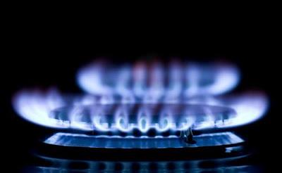 Estufa de gas calderas de gas for Calderas de gas propano