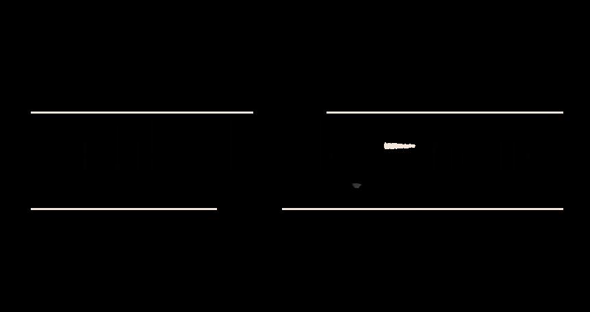 Libellule noire  - Blog Mode.