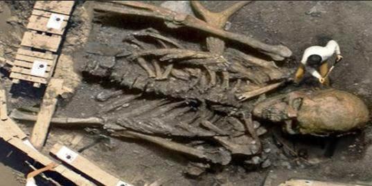 tengkorak dan tulang belulang raksasa