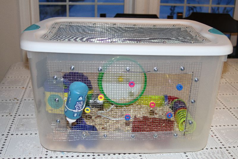 Question about a hamster bin cage yahoo answers for How to build a hamster cage