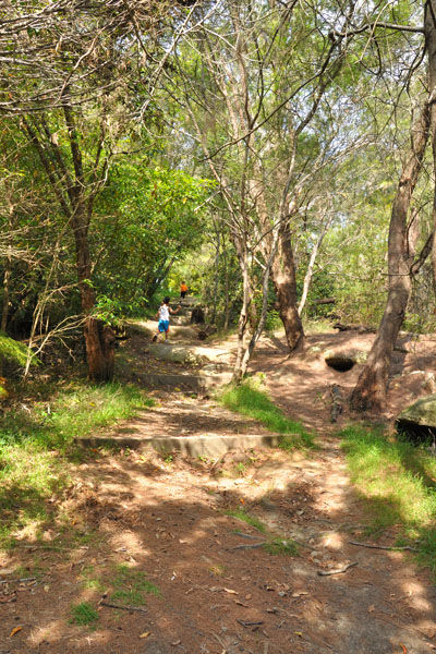 bushwalk STEP track
