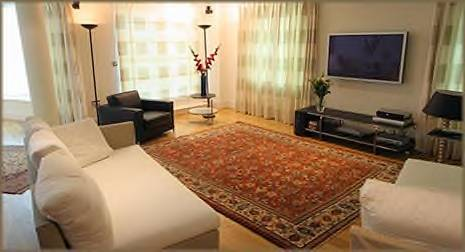 Living room Rugs Designs