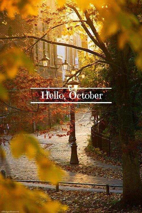 blog blogger cambios octubre Esencia Trendy Sonia H