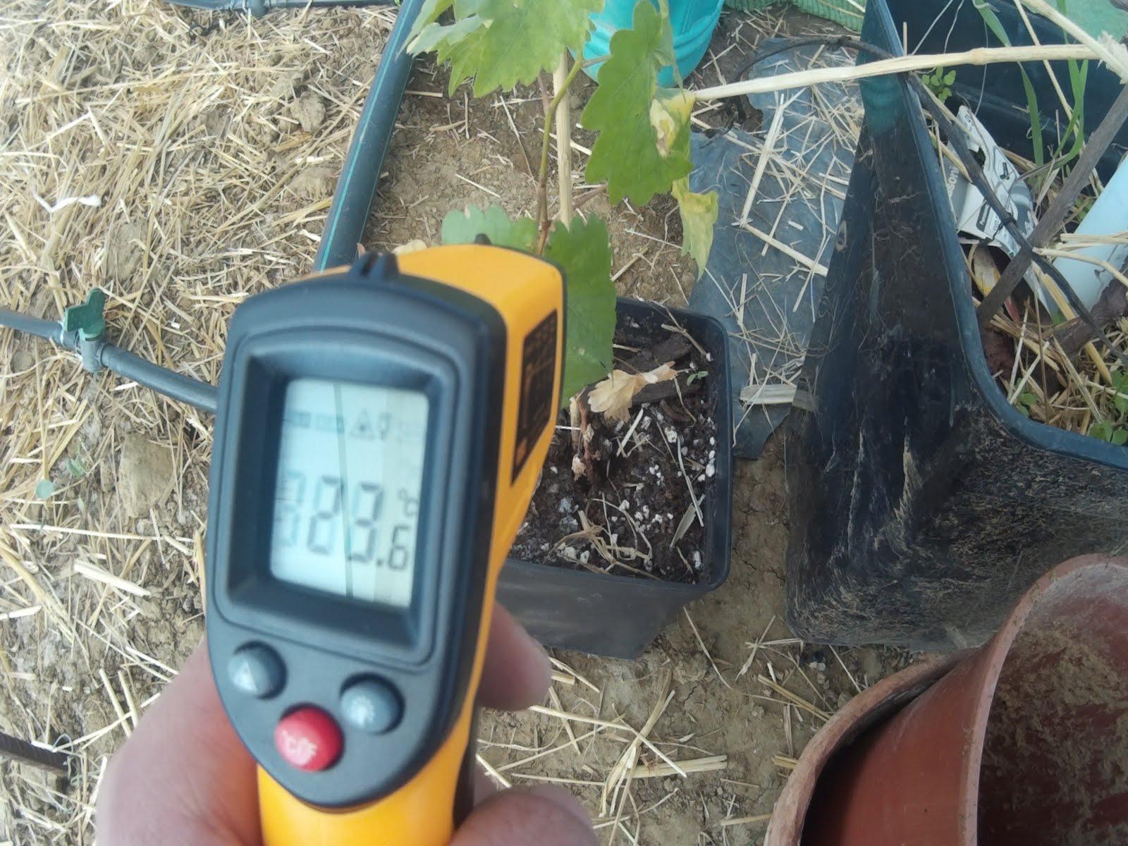 Resultado de imagen para temperatura del suelo