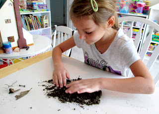 Tessa examined a cup of soil to discover what soil contains. She sorted the things she found into three piles...once living, living and nonliving.