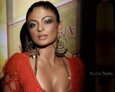 Neeru Bajwa hot photo