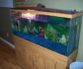 Our stuff 4 sell 40 gallon fish tank 175 w aquarium stand for 100 gallon fish tank with stand